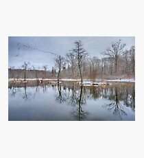 Early Spring in New England Photographic Print