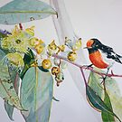 Red Capped Robin with Gum Blossom by scallyart