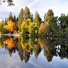 Why it's called Mirror Pond by Marita Sutherlin