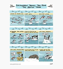 Sustainable Travel Tips from the Arctic Tern Photographic Print