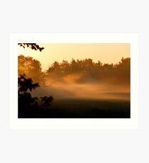 Sunrise on Bush Rd. VII Art Print