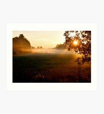 Sunrise on Bush Rd. VIII Art Print