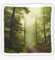 Long Forest Walk Sticker