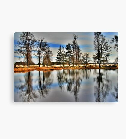 Reflection in Spring Canvas Print