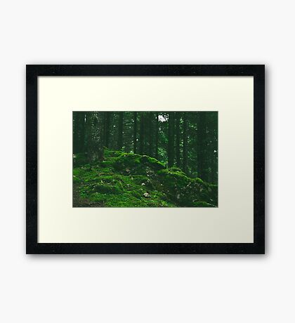 Mound of Moss Framed Print