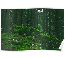 Mound of Moss Poster