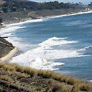 What you'll see by rail heading South along tracks into Santa Barbara, CA by leih2008