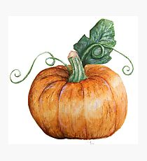 Hallowe'en Pumpkin Spice Photographic Print