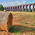 Straw Bales - Balcombe Viaduct - HDR by Colin  Williams Photography