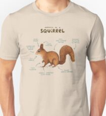 Anatomy of a Squirrel T-Shirt