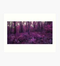 Purple forest Art Print