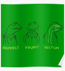 KERMIT: PROSPECT - FRONT- SECTION Poster