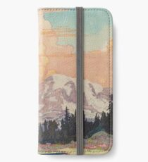 Storms over Keiisino iPhone Wallet/Case/Skin