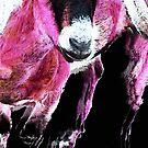 Pop Art Goat - Pink - Sharon Cummings by Sharon Cummings