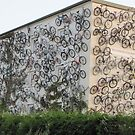 Bicycles once differently by orko