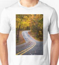 A Palette of Gold  T-Shirt