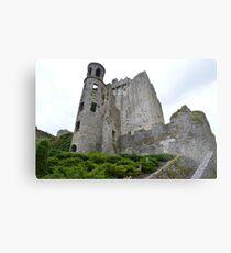 Blarney. Metal Print