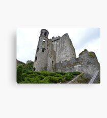 Blarney. Canvas Print