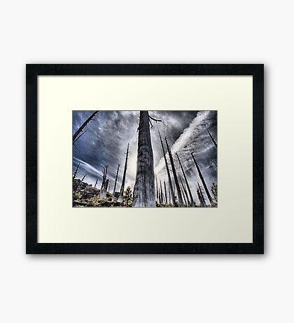 Something Like Apocalypse Framed Print