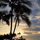 Floating Lantern Sunset by photosbypamela