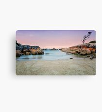 Beautiful Bay of Fires Canvas Print