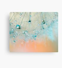 droplets of aqua Canvas Print