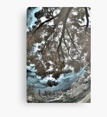 Overhang Metal Print