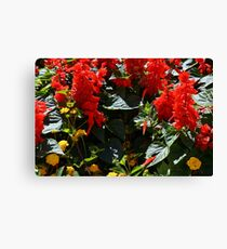 Red flowers texture Canvas Print