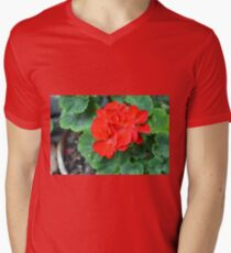 Red flower in the pot with many green leaves T-Shirt