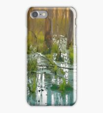 Backwater iPhone Case/Skin