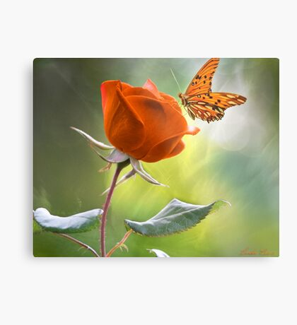 The Flower and the Butterfly Metal Print
