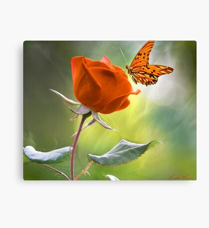The Flower and the Butterfly Canvas Print