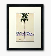 Egon Schiele -Little Tree  Framed Print