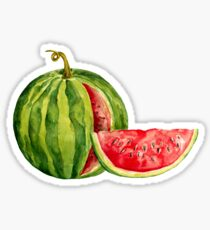 Watercolor watermelon Sticker