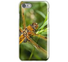 Four Spot Chaser Dragonfly iPhone Case/Skin