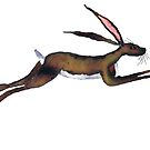 FLYING HARE h3113 by Hares & Critters