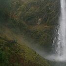 Multnomah Falls by Randy Richards
