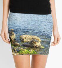 stones and seaweed on rocky coast of the sea Mini Skirt