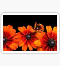 Orange Sunflowers  Sticker
