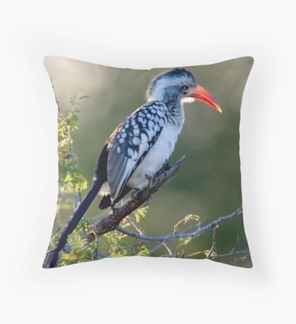 Red Billed Hornbill Throw Pillow