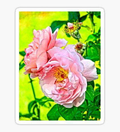 Pretty in pink Sticker