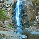 Cedar Creek Waterfalls by Penny Smith