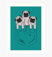 Pocket Pug Art Print