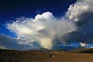 Thunderhead over Becky Peak - Nevada by Arla M. Ruggles