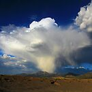 Thunderhead over Becky Peak - Nevada by Arla Ruggles