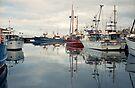 Winter—Victoria Dock, Hobart by BRogers