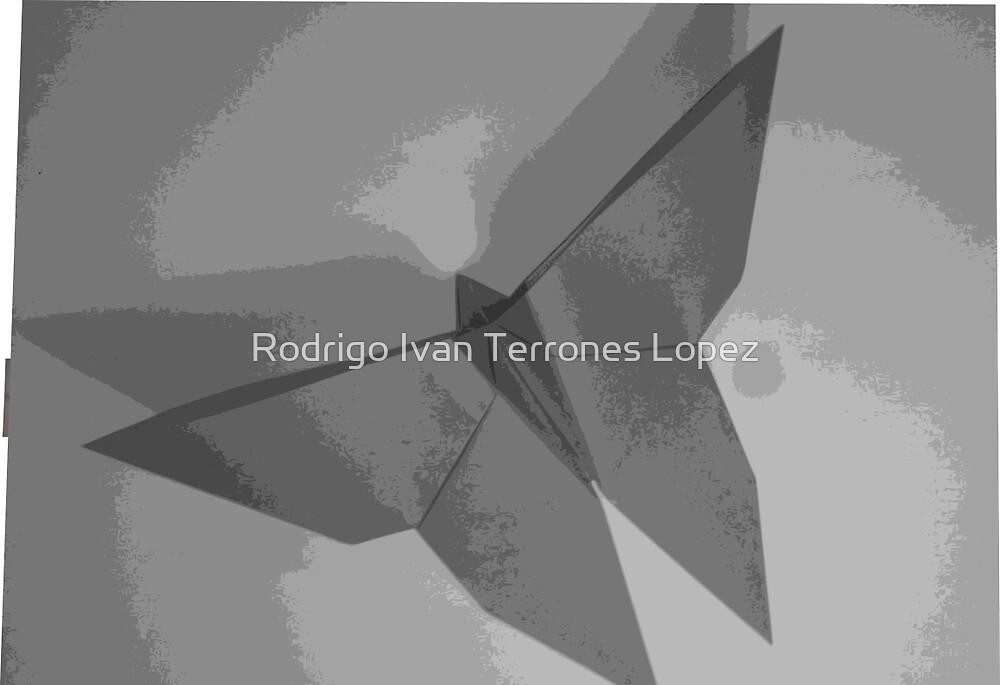 Butterfly by Rodrigo Ivan Terrones Lopez