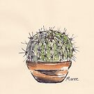 Advice from a Cactus - STAY SHARP! by Maree Clarkson