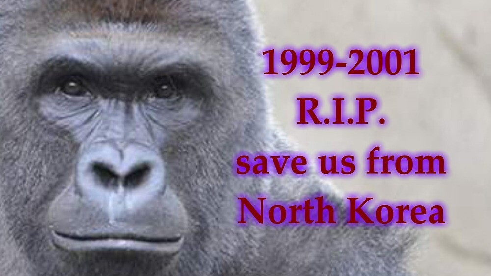 RIP H.A. rambe a real hero~~HARAMBE~~ by xMemeMachine420