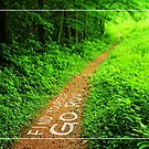 Find Yourself Go Run Motivational Forest by Beverly Claire Kaiya